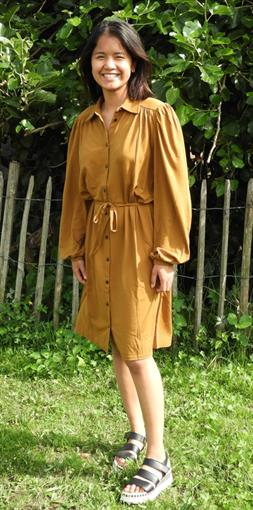 OBJECT Dark honey shirt dress