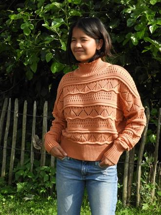 OBJECT Rust cropped knit